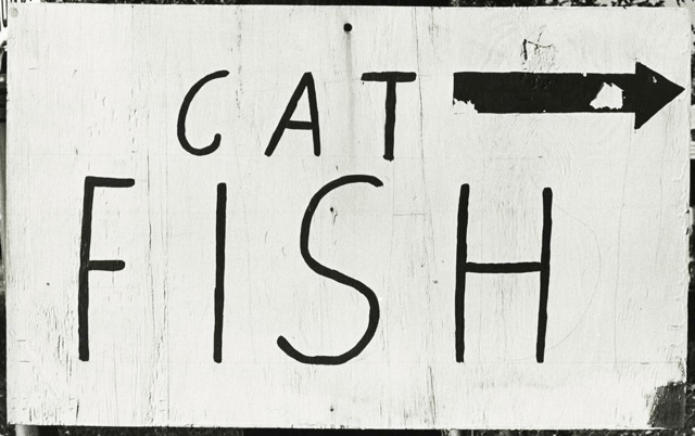 cat-fish,-Grand-Tower,-Ill.-c1973