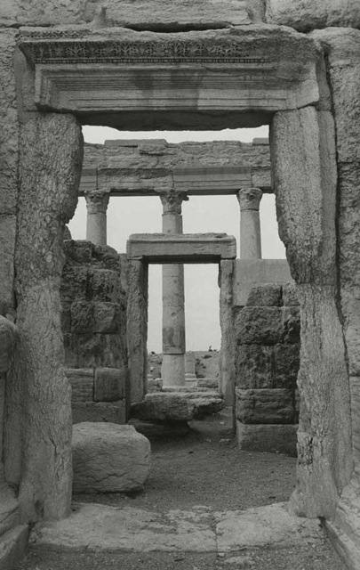 Palmyra, Syria  vintage silver print  ©William Carter 1993