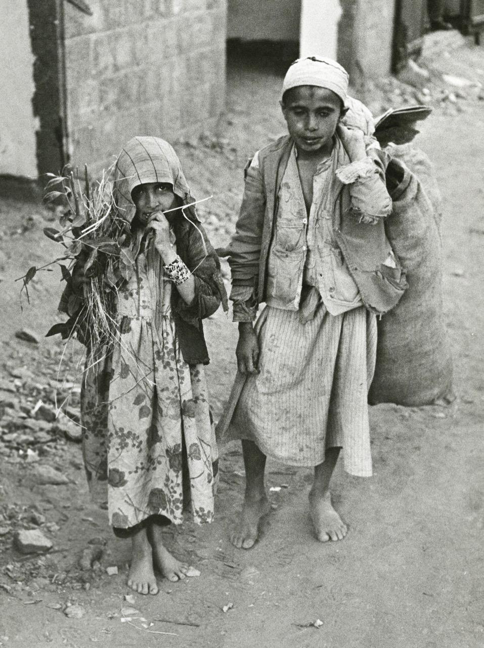 yemen1.3