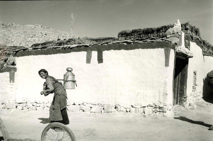 Tibet-1 TibetCov 1 copy